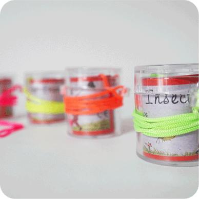 j-etudie-les-insectes-marc-vidal-jeu-vintage-biomome-web-2